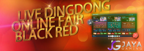 Live Dingdong Online Fair Black Red